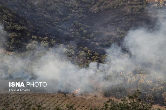 آتش سوزی منطقه حفاظت شده خامی تقریبا اطفاء شده است