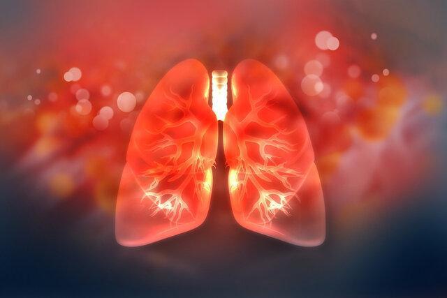 تهیه نخستین نقشه مولکولی از ریه برای یاری به بازسازی آن