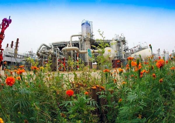 اجرای حداکثری طرح های جمع آوری گازهای مشعل در مناطق نفتخیز جنوب