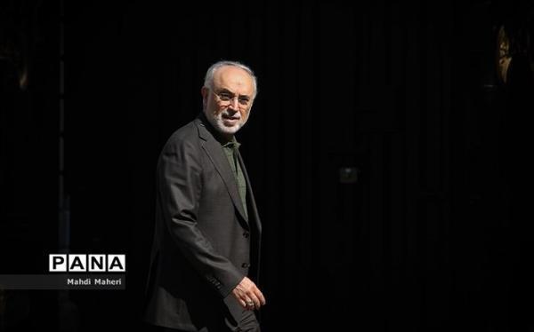 صالحی: ایران به اورانیوم با غنای 60 درصد دست یافت